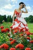 Красная фантазия и розы стоковое фото