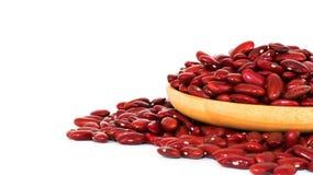 красная фасоль, семя, сырцовый, естественное, питание, еда, деревянная, крупный план, вегетарианец, диета, здоровый, красная, еда Стоковое Изображение