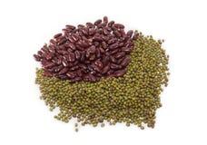 Красная фасоль и зеленая фасоль Стоковые Изображения RF