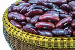 Красная фасоль стоковое фото rf