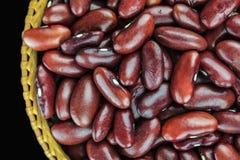 Красная фасоль Стоковые Фото
