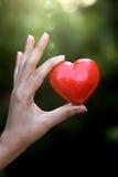 Красная форма сердца в руках Стоковая Фотография