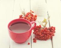 Красная чашка терапевтического травяного чая с ягодой рябины на белом деревенском деревянном столе альтернативный bamboo поднос с Стоковые Изображения