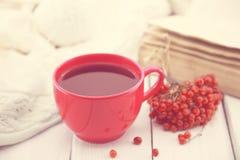 Красная чашка терапевтического травяного чая с ягодой рябины на белом ru Стоковые Фотографии RF