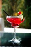 Красная ягода стоковая фотография rf