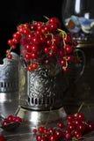 Красная ягода Стоковые Изображения RF
