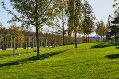 Краснодар, Россия - 7-ое октября 2018: Мягкие зеленые лужайка и деревья первоначально формы в парке Краснодаре или Galitsky в aut стоковая фотография
