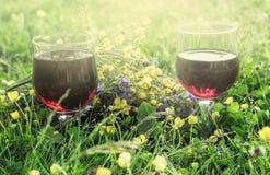 Красное вино в 2 стеклах в траве Стоковая Фотография