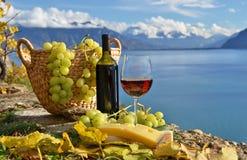 Красное вино и виноградины Стоковые Изображения