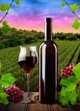 Красное вино и виноградник Стоковые Изображения RF