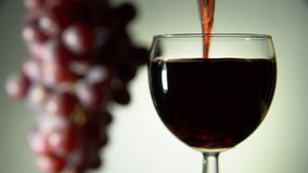 Красное вино полито в стекло на светлой предпосылке акции видеоматериалы