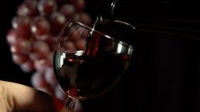 Красное вино полито в стекло на темной предпосылке сток-видео