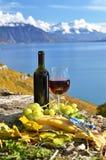 Красное вино, сыр и виноградины Стоковые Изображения
