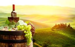 Красное вино с бочонком на винограднике в зеленой Тоскане, стоковое изображение rf