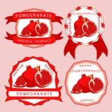 Красное гранатовое дерево Стоковое Изображение