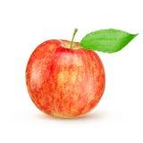 Красное желтое яблоко при зеленые лист изолированные на белой предпосылке Стоковые Изображения RF