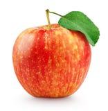 Красное желтое яблоко при лист изолированные на белизне Стоковая Фотография