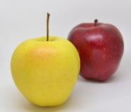 Красное желтое яблоко с зеленым цветом стоковые фотографии rf