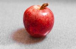 Красное зрелое яблоко на черной белой предпосылке Стоковая Фотография