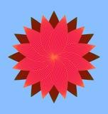 Красное изображение цветения Стоковая Фотография