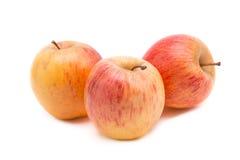 Красное и желтое яблоко изолированное на белой предпосылке Стоковые Изображения
