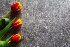 3 красное и желтые тюльпаны на предпосылке grunge Стоковые Фото