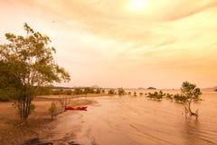 Красное каное на пляже в вечере Стоковые Изображения RF