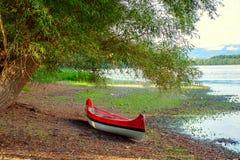 Красное каное на пляже на реке Дунае Стоковое Фото