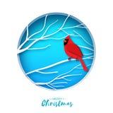 Красное кардинальное усаживание на ветви приветствие рождества карточки веселое Птица сидя на березы разветвляет в стиле отрезка  иллюстрация вектора