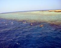Красное Море подныривания Стоковая Фотография