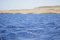 Красное Море свободного полета стоковое фото rf