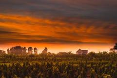 Красное небо перед заходом солнца стоковое изображение rf