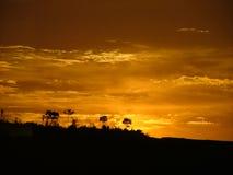 красное небо Стоковая Фотография RF