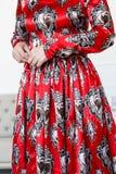 Красное платье Стоковые Фото