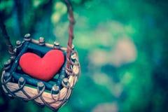 Красное сердце в корзине Стоковые Фотографии RF