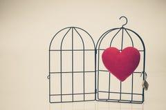 Красное сердце в раскрытой клетке птицы Стоковое фото RF