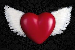 Красное сердце с крылами ангела Стоковые Изображения RF