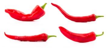 Красное собрание chili Стоковые Изображения