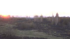 Красное солнце в заходе солнца дыма на предпосылке города после лесного пожара и сухой травы, космоса экземпляра, повреждения сток-видео