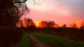 Красное утро стоковая фотография rf