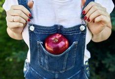 Красное яблоко в прозодеждах джинсов стоковое фото rf