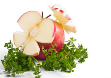 Красное яблоко с greenery Стоковая Фотография