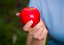 Красное яблоко в руке Стоковые Изображения