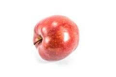 Красное яблоко на белой предпосылке Стоковое Фото