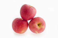 Красное яблоко на белой предпосылке Стоковые Изображения RF