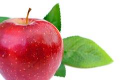Красное яблоко при изолированные листья крупного плана eyedroppers высокий разрешения взгляд очень Стоковые Изображения