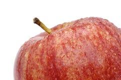 Красное яблоко с каплями росы Стоковое Изображение