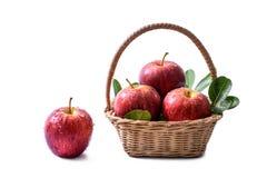 Красное яблоко с падениями воды в и вне корзины Стоковые Изображения RF