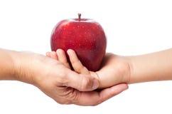 Красное яблоко 11 Стоковое Изображение RF