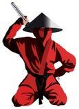 Красное ninja Стоковое Изображение RF